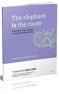 The elephant is the room eBook
