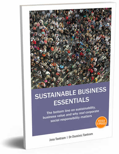 Sustainable Business Essentials 2019 - 3D rendered image of book cover