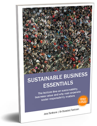 Sustainable Business Essentials Book Cover 3D image