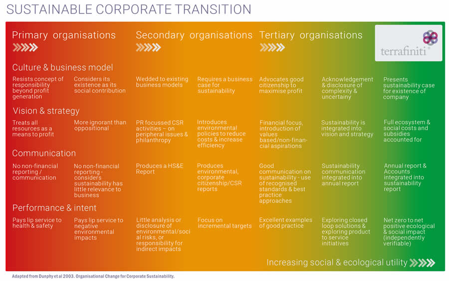 sustainable-transition-corporate-evolution